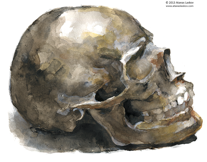 Laskov_Skull